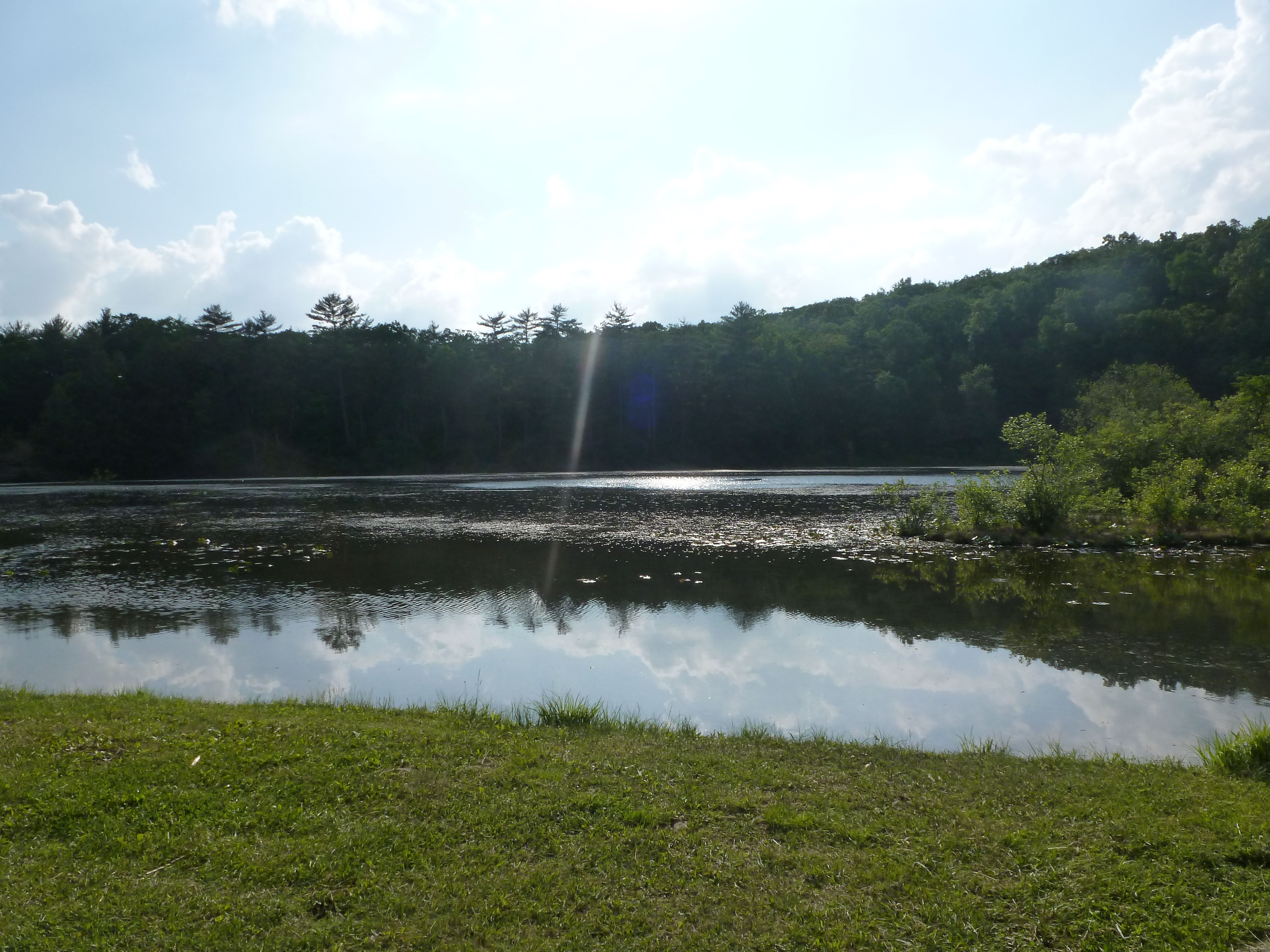 Whipple Dam State Park Rothrock State Forest