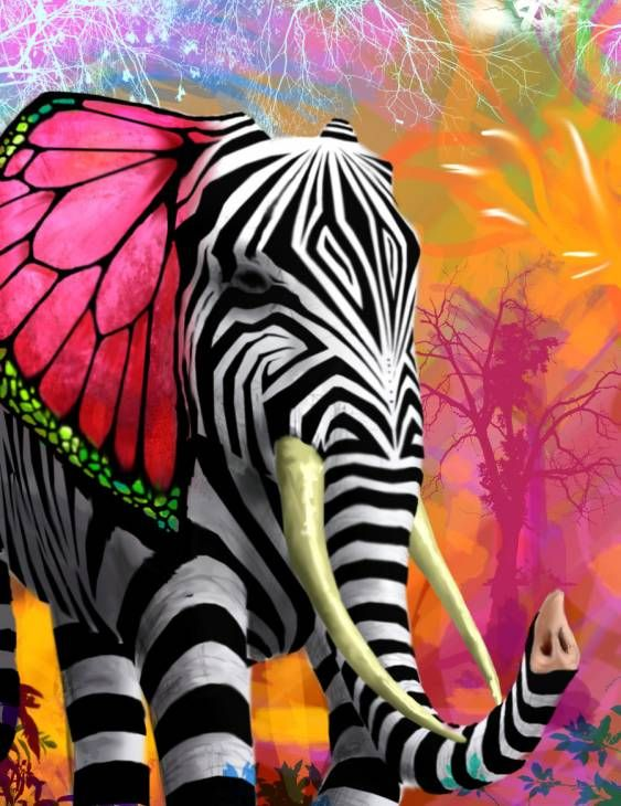 Psychedelic Ele Fantasy Elephant Art Art Animal Art
