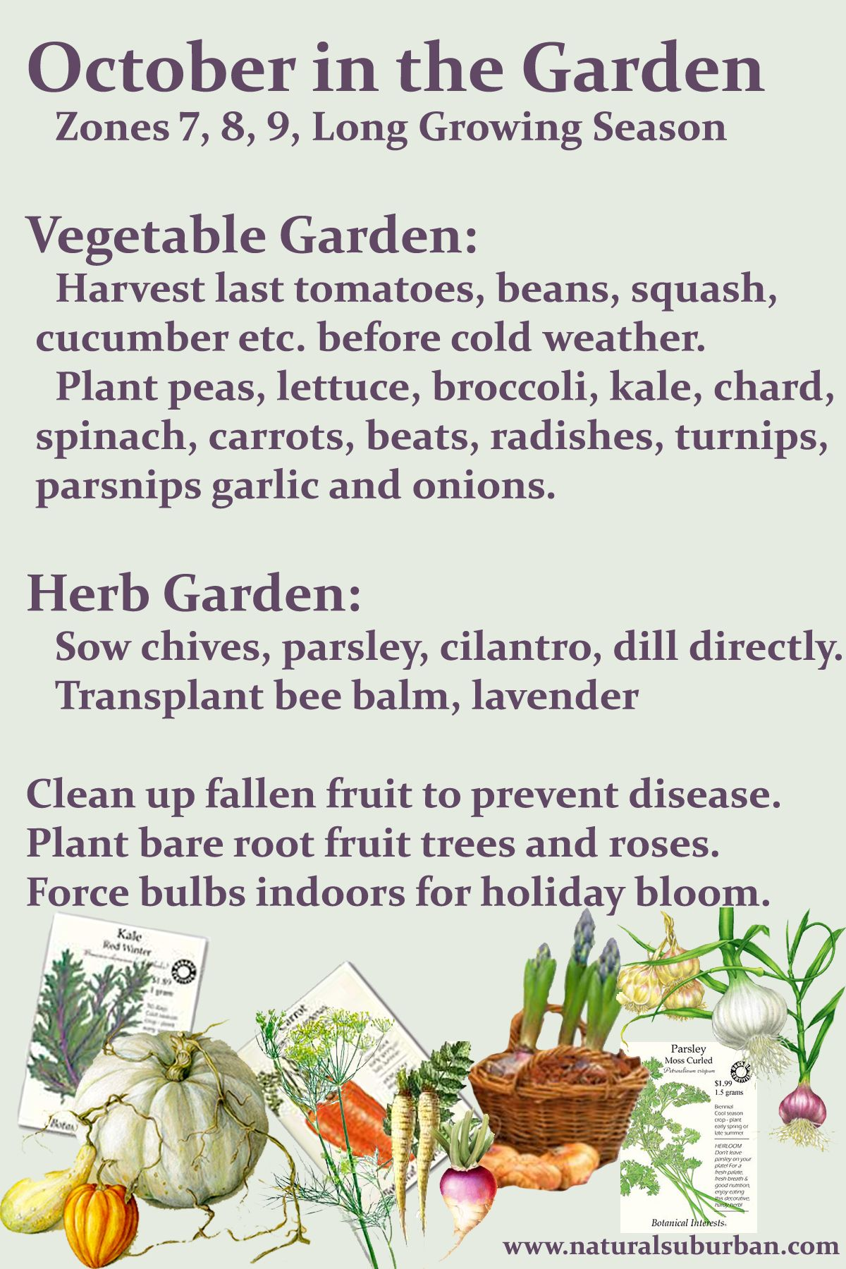 october u0027s to do list zones 7 8 9 garden pinterest gardens