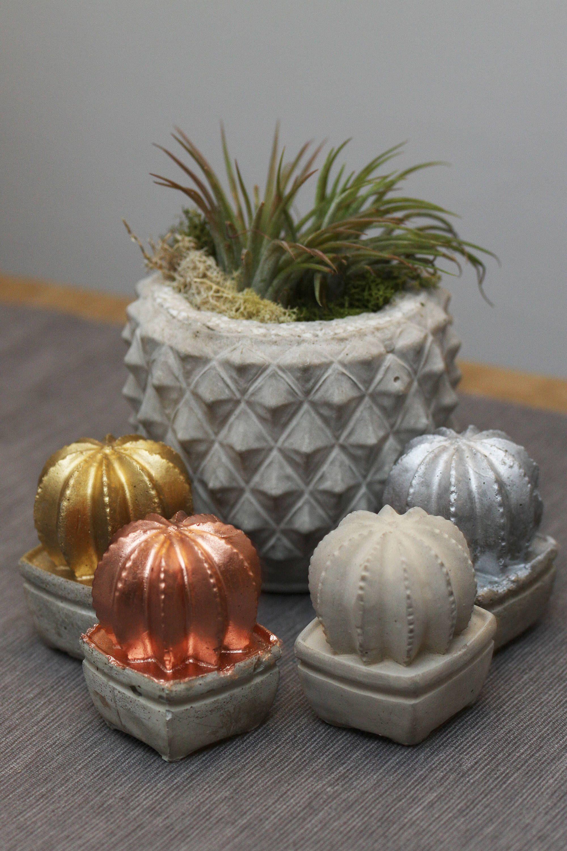 Concrete plant pot cactus plant pot gift concrete