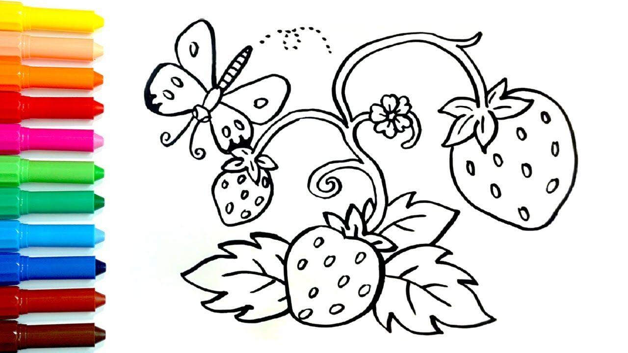 딸기 그리기 색칠하기 색칠공부 손그림 같이 그려요 Stawberry