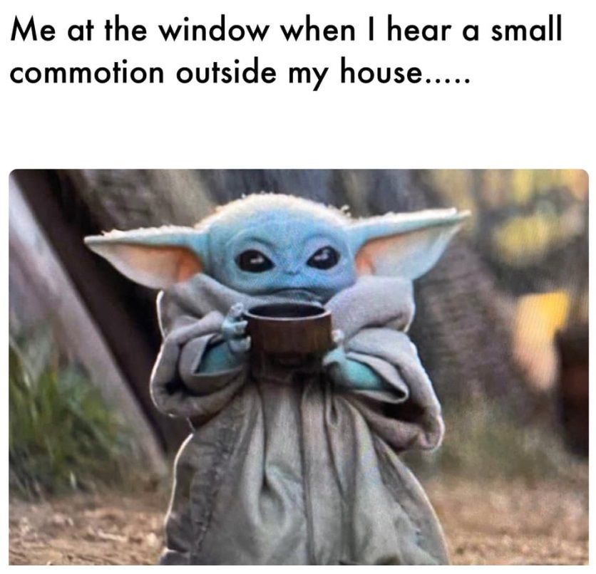 The 50 Best And Funniest Baby Yoda Memes 50 Best Part 3 Yoda Funny Yoda Meme Funny Pictures