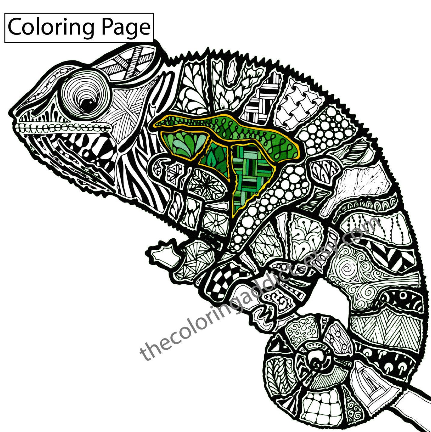 zentangle lizard coloring page animal zentangle colouring completed colored adult coloring. Black Bedroom Furniture Sets. Home Design Ideas