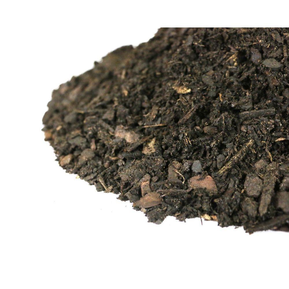 Option for soil, week 1 Soil, Snail farming