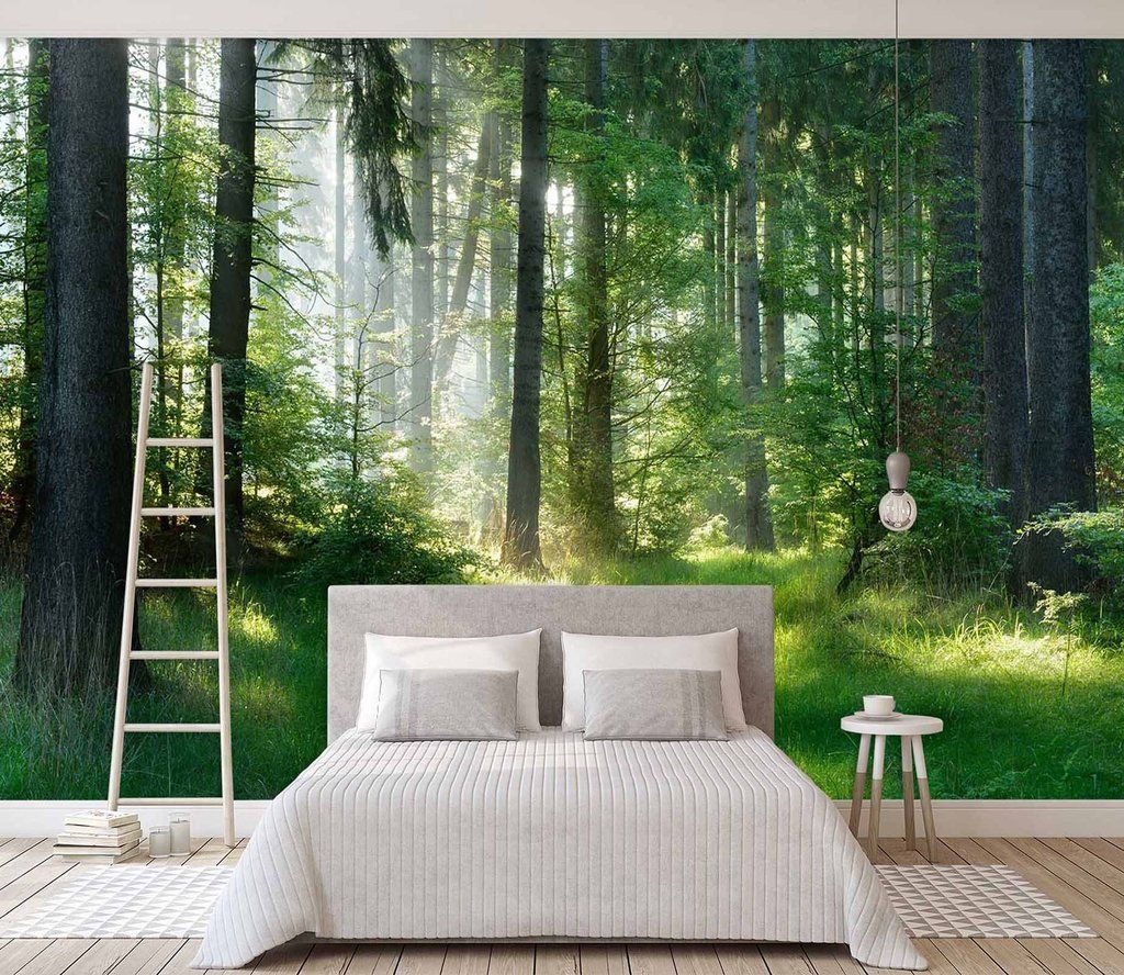 3D Sunshine Forest 663 Wall murals, Traditional