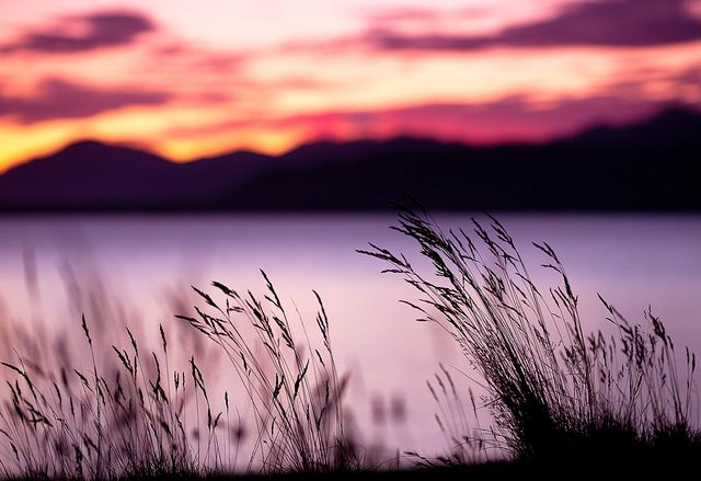 Unbelievable sunset!!! Such vivid shades of pink and purple!