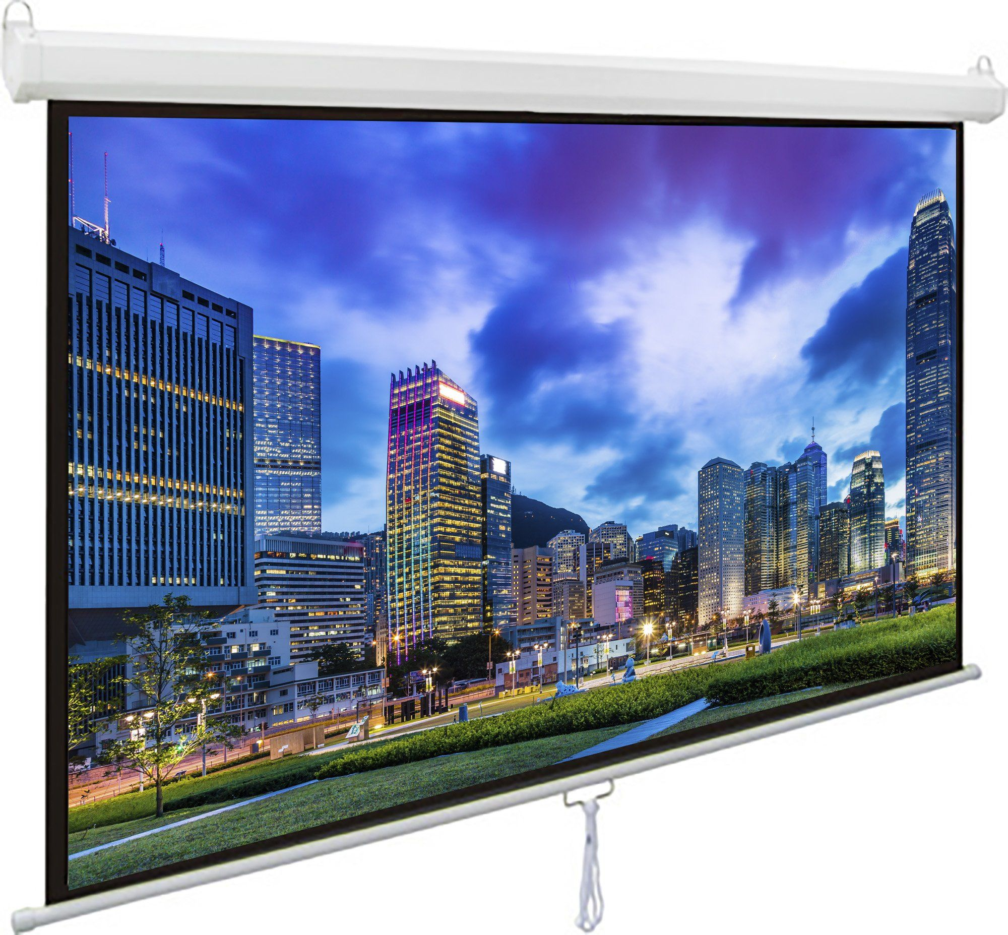 """100/"""" Projector Screen 100 inch Diagonal 16:9 Projection HD Manual Pull Down Hom"""
