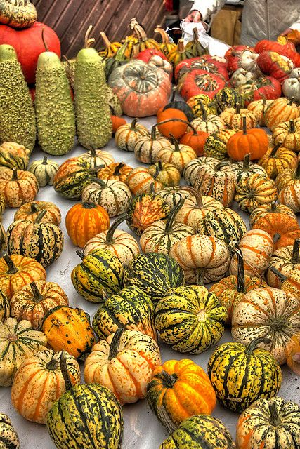 Pumpkin Festival in Altendorf, Franconia, Germany