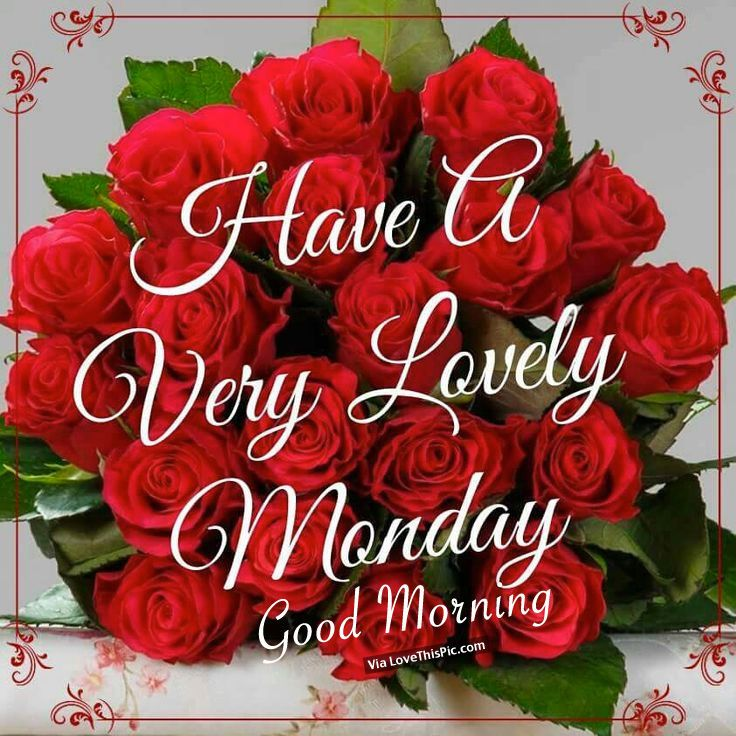 Have A Very Lovely Monday, Good Morning
