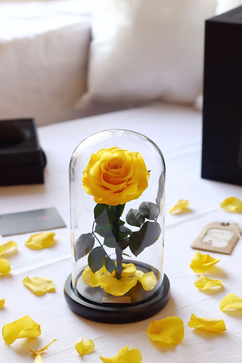 Beautiful Iluba Preserved Yellow Rose In Dome Glass Vase Bouquet Delivery Yellow Roses Rose Dome