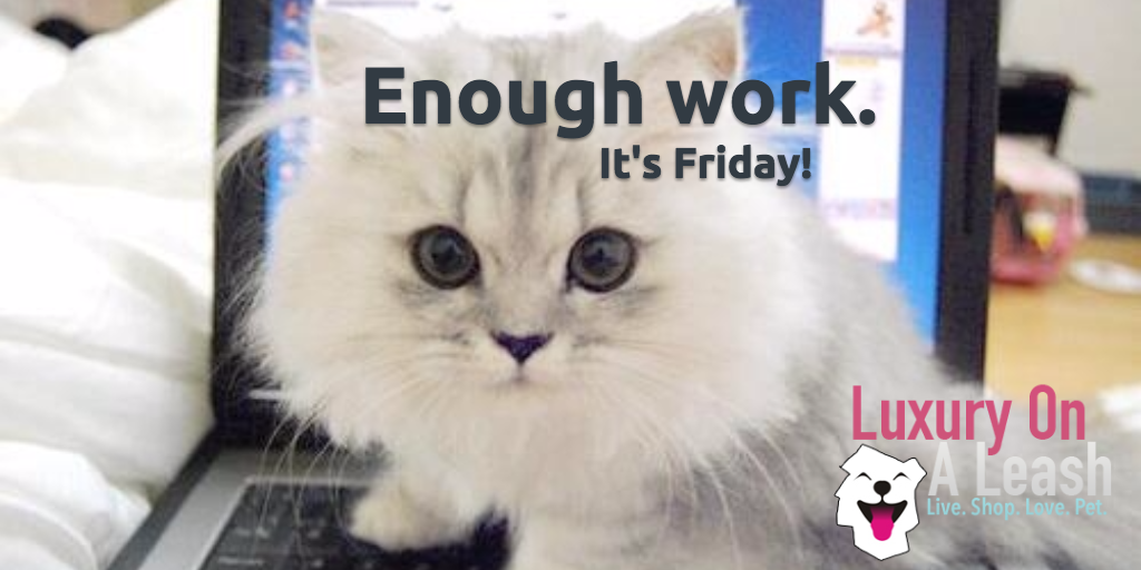 Enough work. It's Friday! #TGIF #luxuryonaleash #Friday #weekend