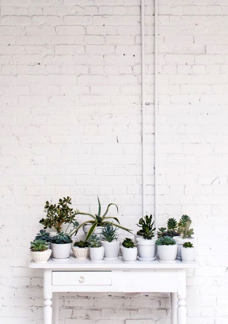 Brick House Sfgirlbybay Plants Indoor Plants Planting Flowers
