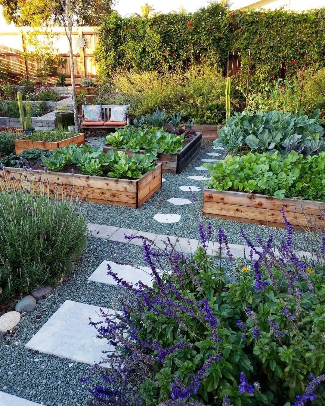 New Snapshots Vegetable garden design Concepts, Trees, it ...
