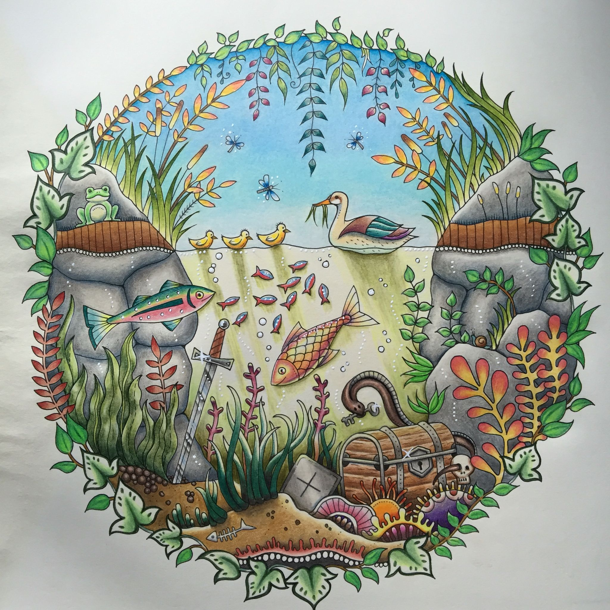 Enchanted Forest Duck Pond Completed Using Peta Hewitts Tutorial Polychromos And Derwent Artist Pencils