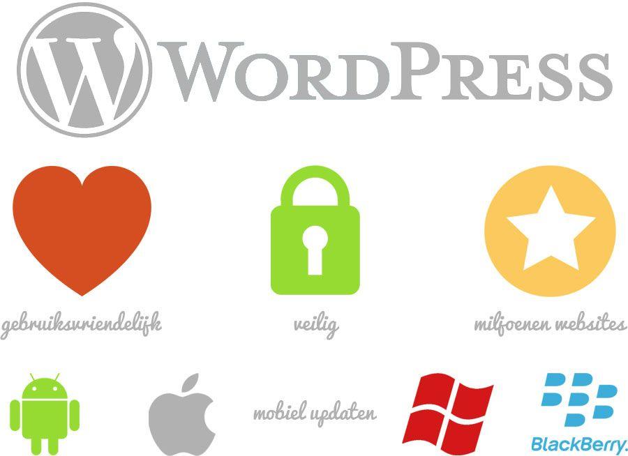 Feeny werkt met WordPress als CMS. Een goede, betrouwbare en solide achtergrond, uitermate geschikt voor het onderwijs.