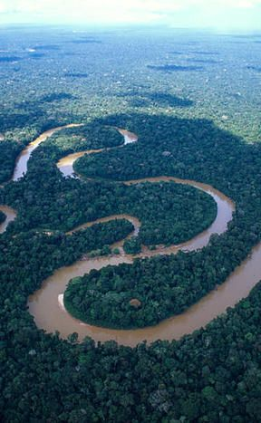 River Facts The Amazon River In Brazil Is The Longest River In