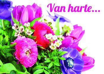 gefeliciteerd bosje bloemen