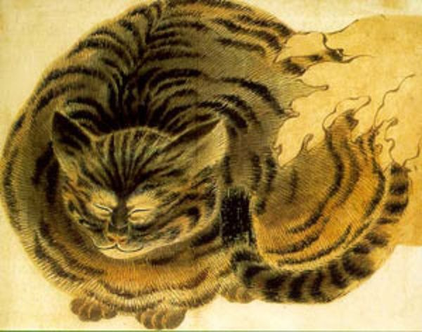 Sleeping cat  |  Japan, 1850 - artist unknown