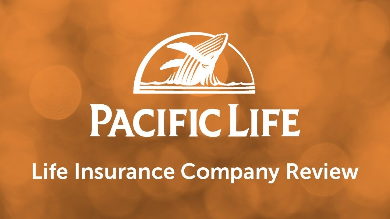 Pacific Life Term Life Insurance With Images Life Insurance