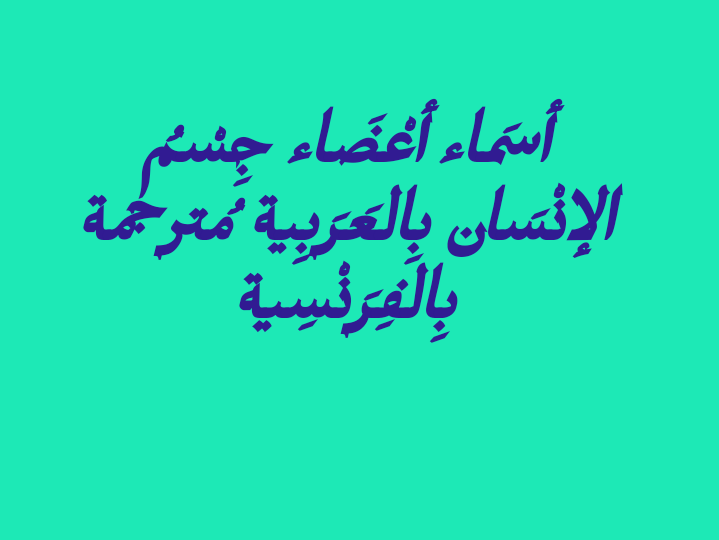 تعليم نت اسماء اعضاء جسم الانسان بالعربية مترجمة للفرنسية Arabic Calligraphy Blog Posts Blog