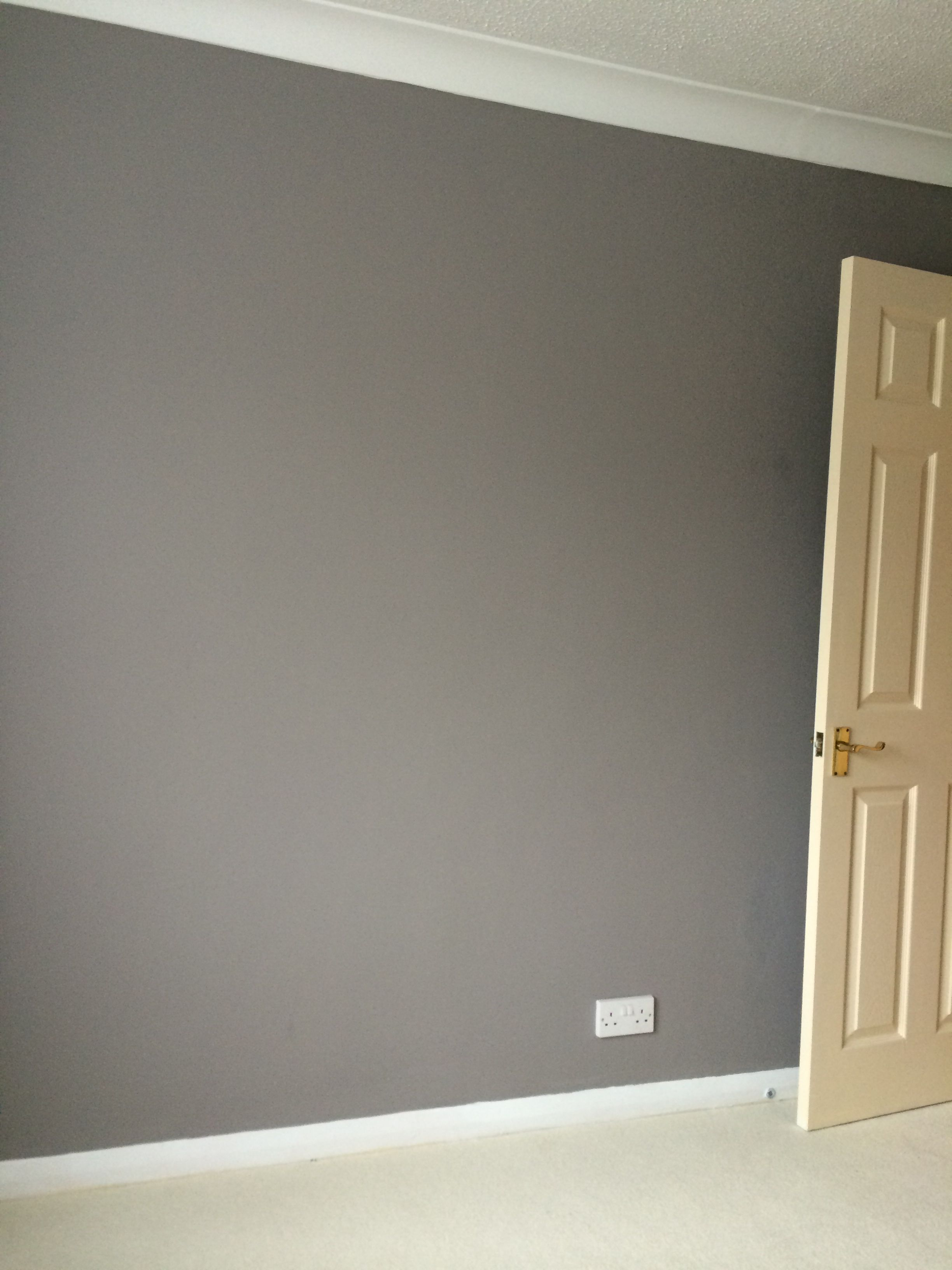 Grey Wall Cream Carpet White Ceiling X Grey Feature Wall