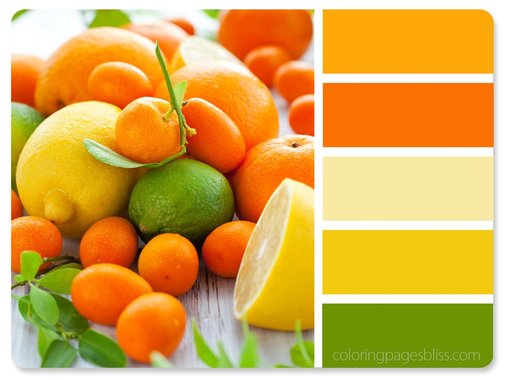 Best Color Combinations Images On Pinterest Colors Color