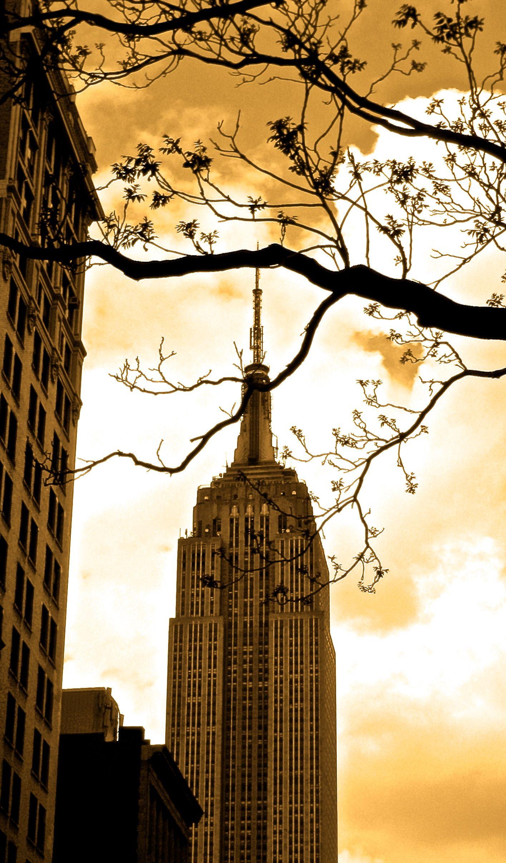 Empire My New York Pinterest