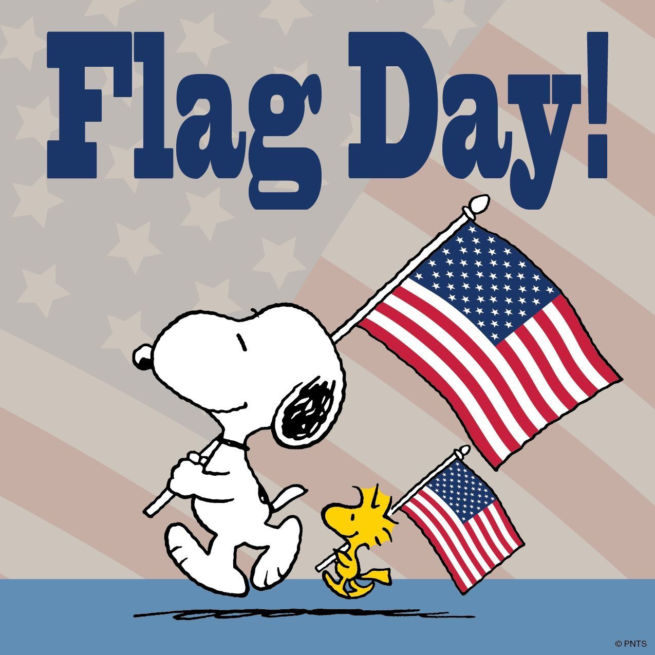 It's Flag Day! Snoopy, Snoopy and woodstock, Charlie