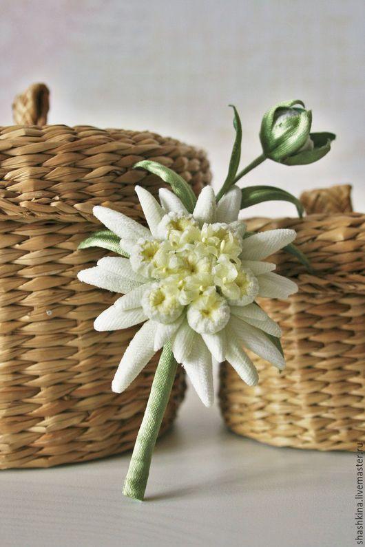 Купить цветы эдельвейс картинки рабочий стол живые обои цветы