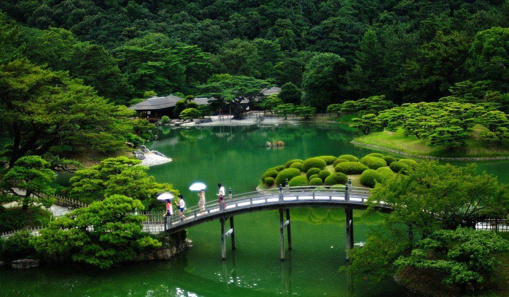 Principios estéticos de los jardines japoneses más bellos Plantas