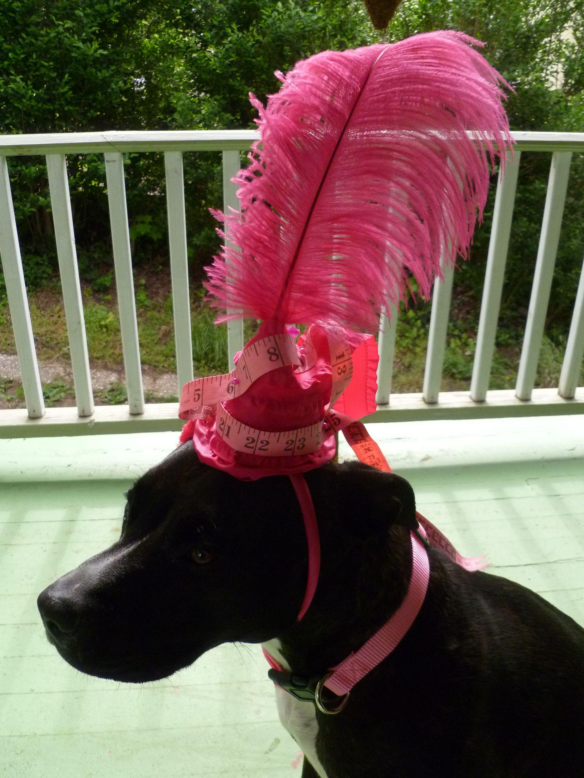 Oooooo!! Doggies wearin' ladies hats! I love it!! :)
