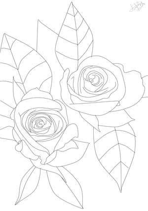 Ausmalbild Rosen | flower coloring | Pinterest | Ausmalbilder, Rose ...