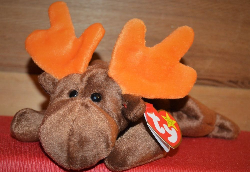 Ty Beanie Baby 1993 Chocolate The Moose Rare With Error Ty Ty