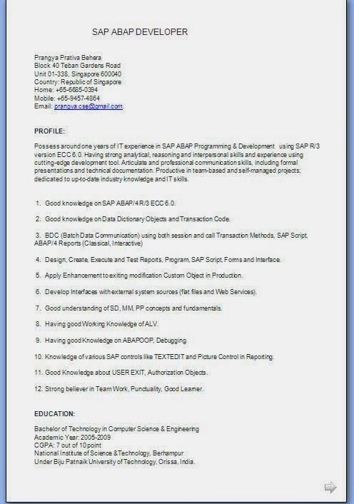 biodata form download for job Sample Template Example ofExcellent - sap abap resume