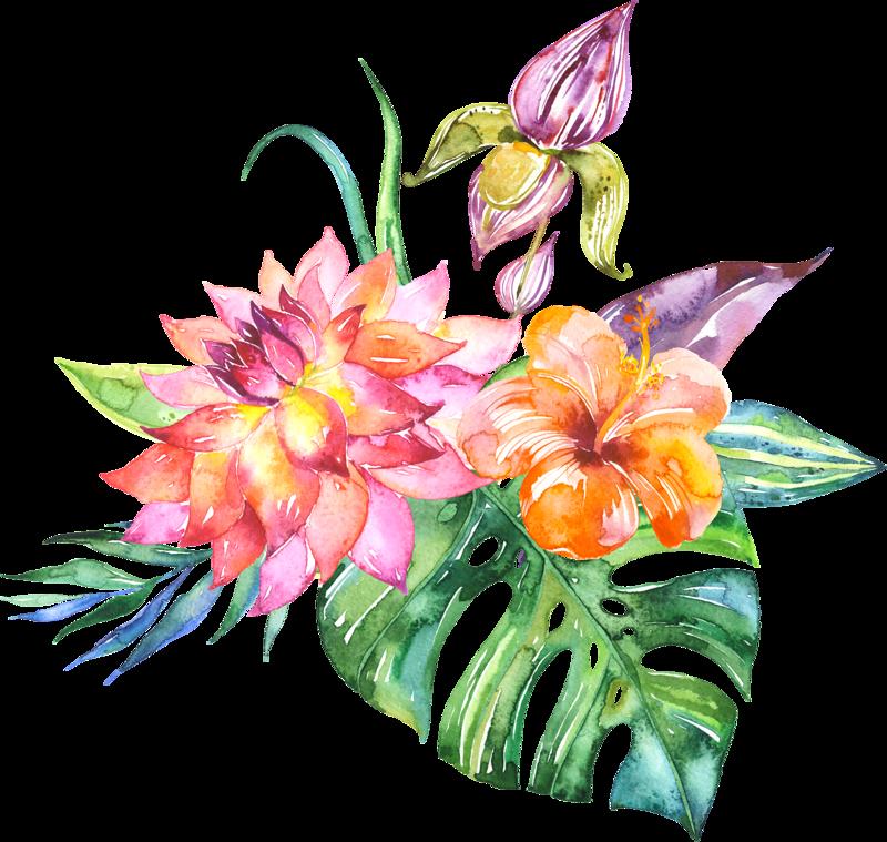 Открытки шляпки, экзотические цветы картинки вектор