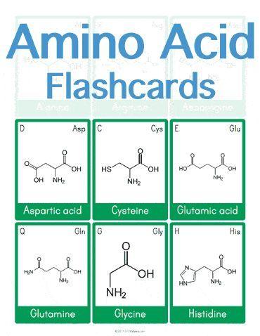 Amino Acid Flashcards BioChemistry Pinterest - new periodic table sodium abbreviation