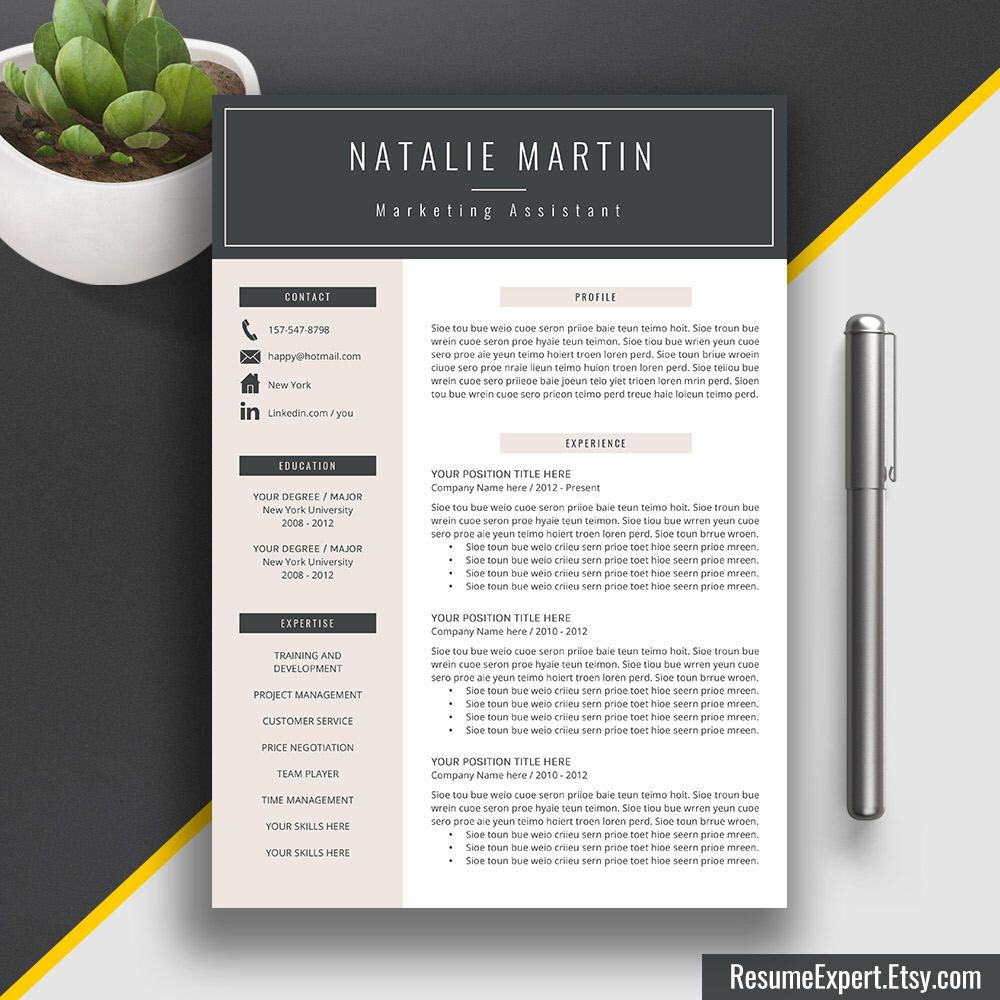 Professional Resume Template / CV Template Word (US Letter and A4 ...