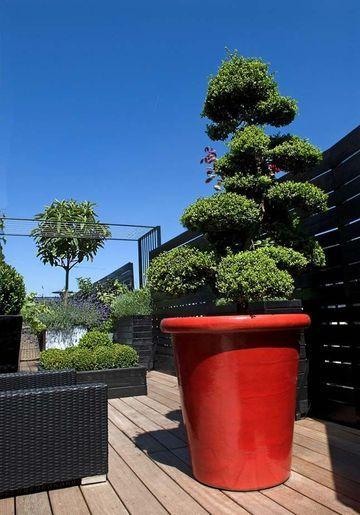 pot rouge terrasse