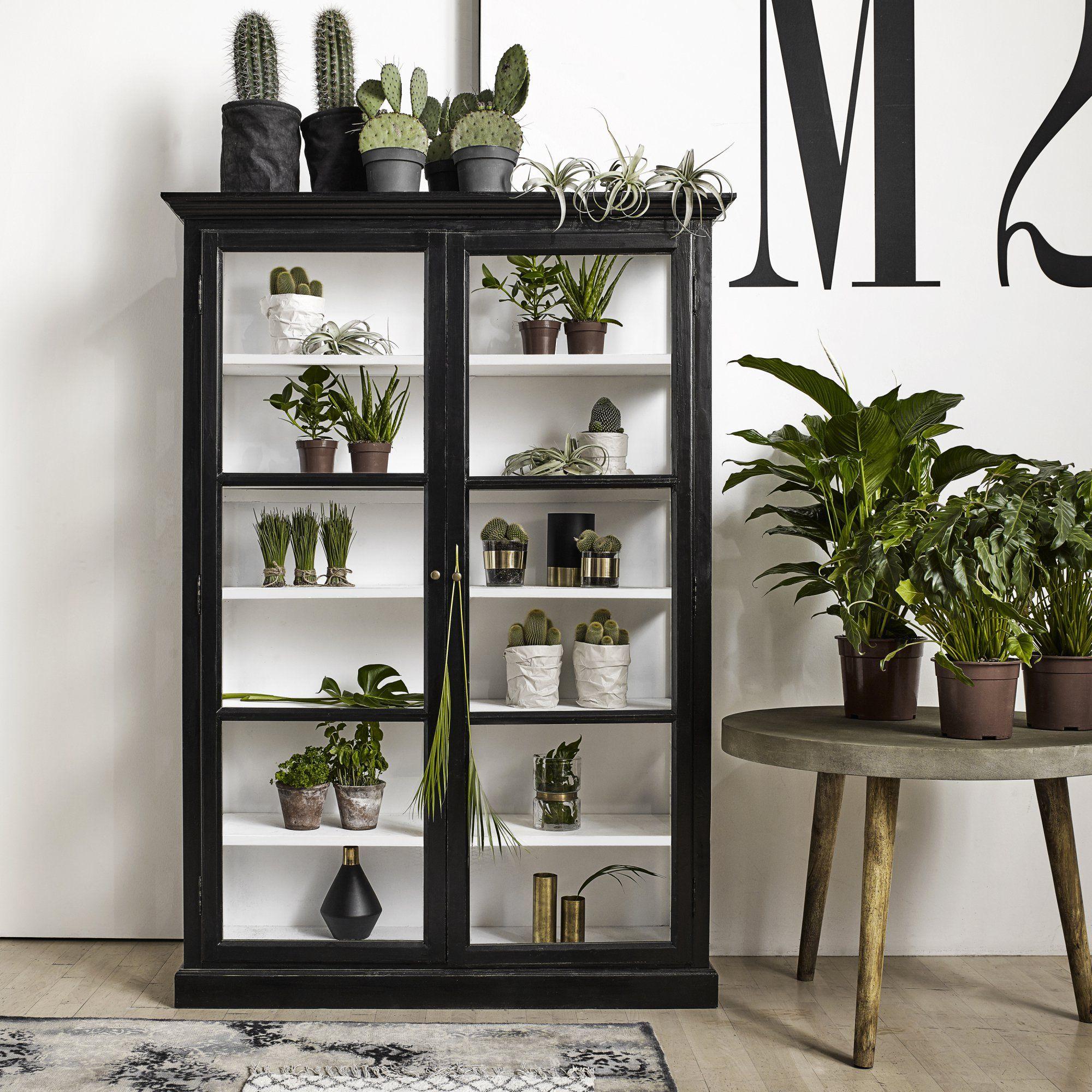 meuble vitrine en bois noir et porte vitr e pour exposer ses plantes dans le salon. Black Bedroom Furniture Sets. Home Design Ideas