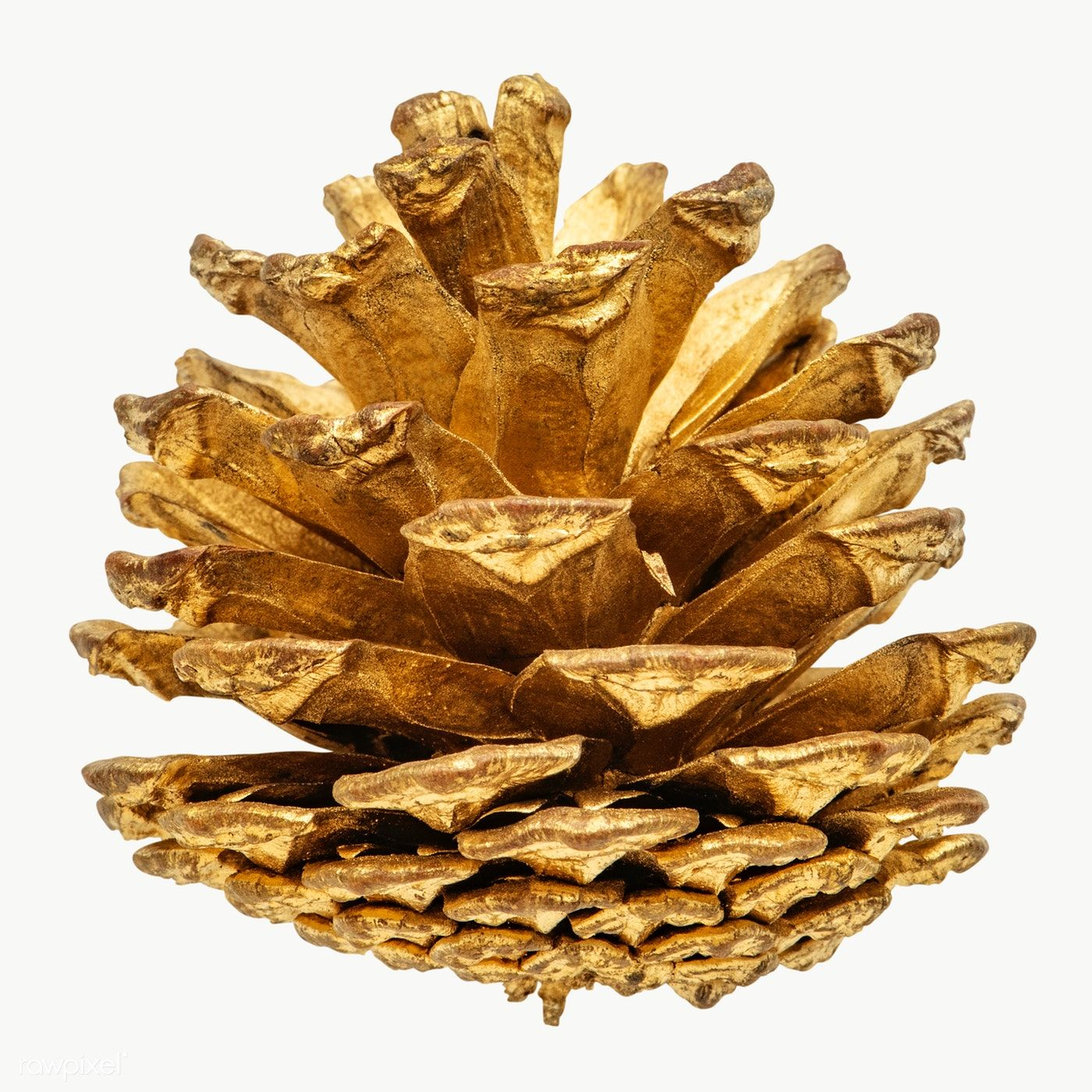 A Gold Pine Cone Christmas Ornament On Transparent Premium Image By Rawpixel Com Jira Pine Cones Easy Christmas Wreaths Wood Christmas Tree