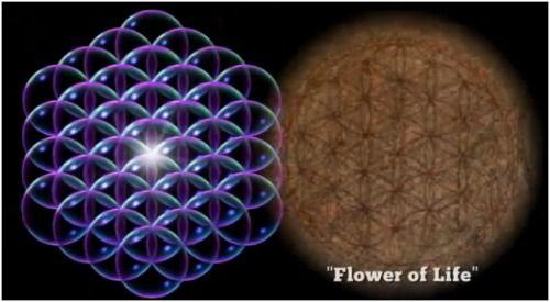 flor de la vida 19 circulos - Buscar con Google