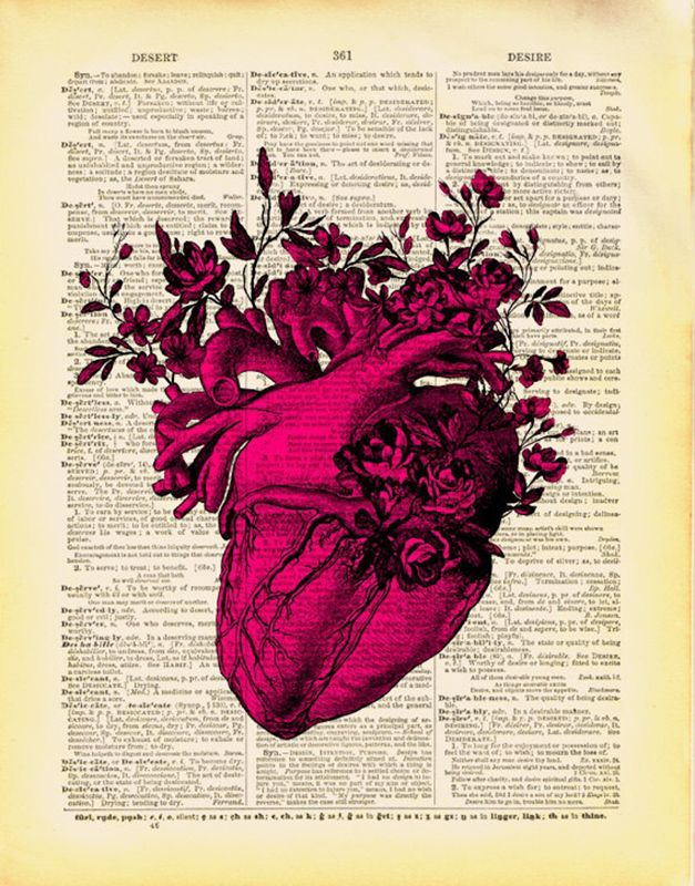 Pin by Everett Collier on HEART ART | Pinterest | Anatomical heart ...