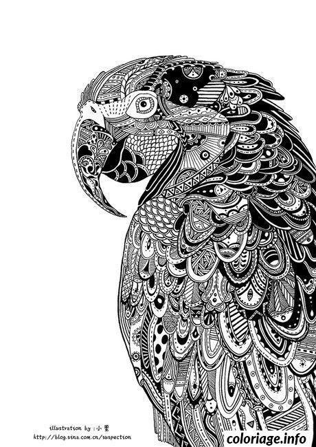 coloriage difficile peroquet adulte dessin à imprimer mandala