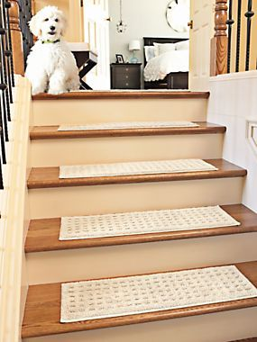 Non Slip Stair Treads   Carpet Stair Treads. Prevent Falls On Stairs And Protect  Stairs From Wear With Nonslip Stair Treads. | Solutions.com