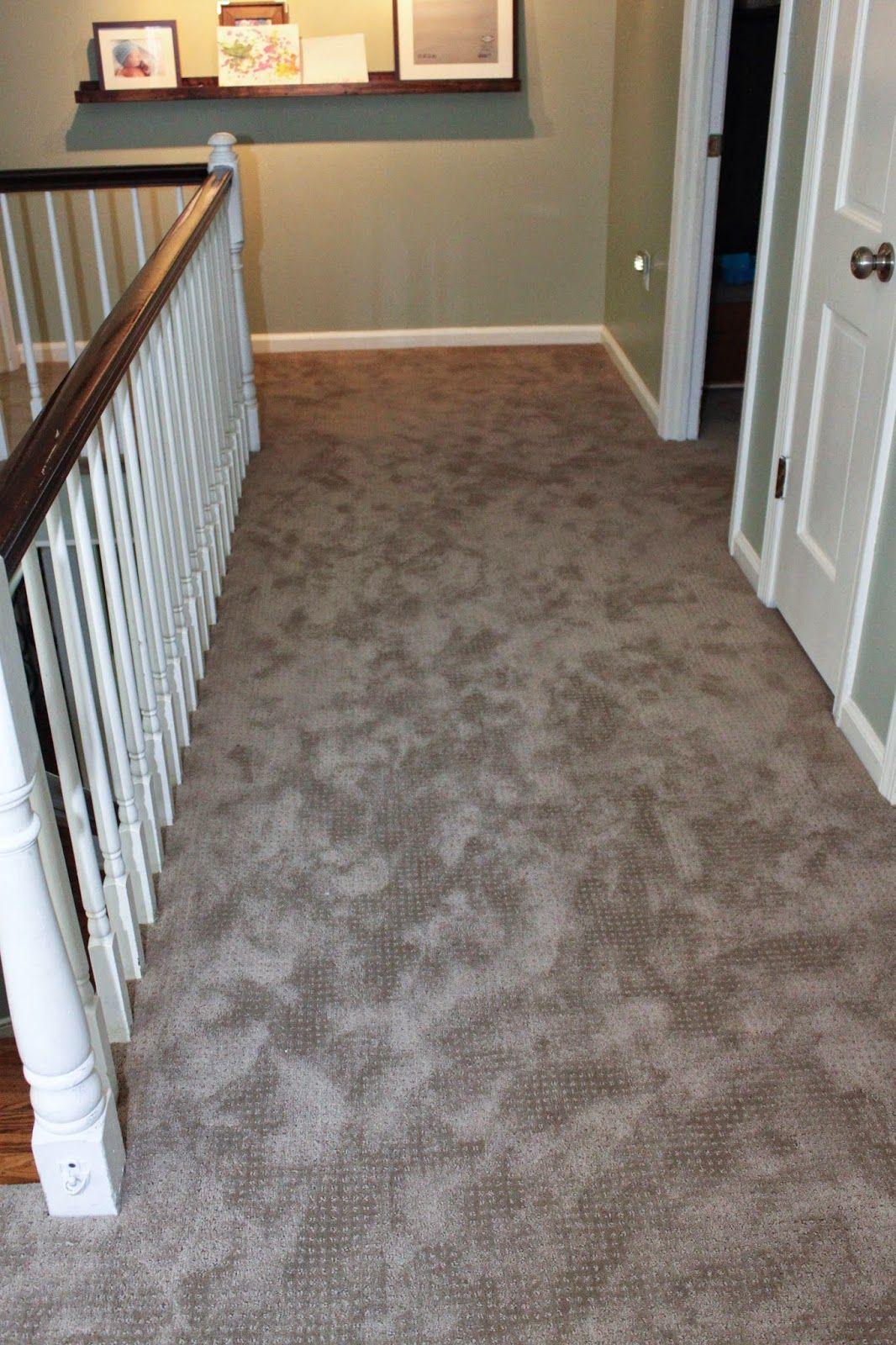 Shaw Carpet in perfect beige Stair runner carpet, Carpet