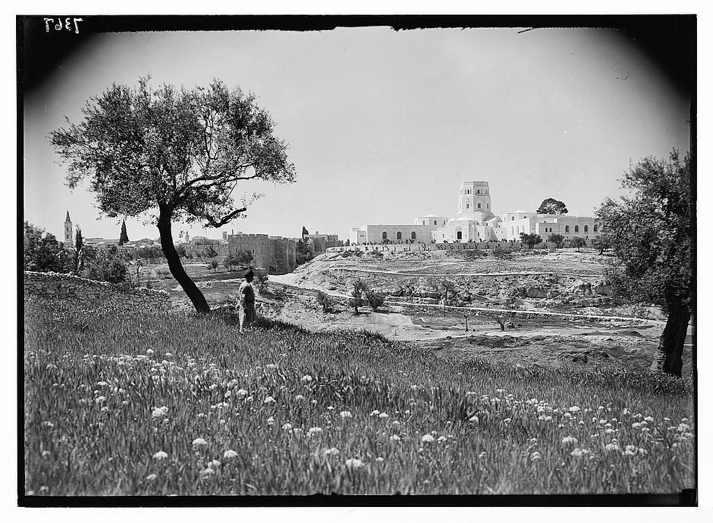 Jerusalem القدس الشريف المتحف الفلسطيني قبل نهبه في عام 1967 Jerusalem Pictures Old Pictures