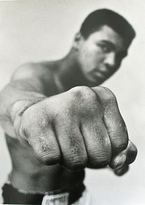 """It's just a job. Grass grows, birds fly, waves pound the sand. I beat people up."""