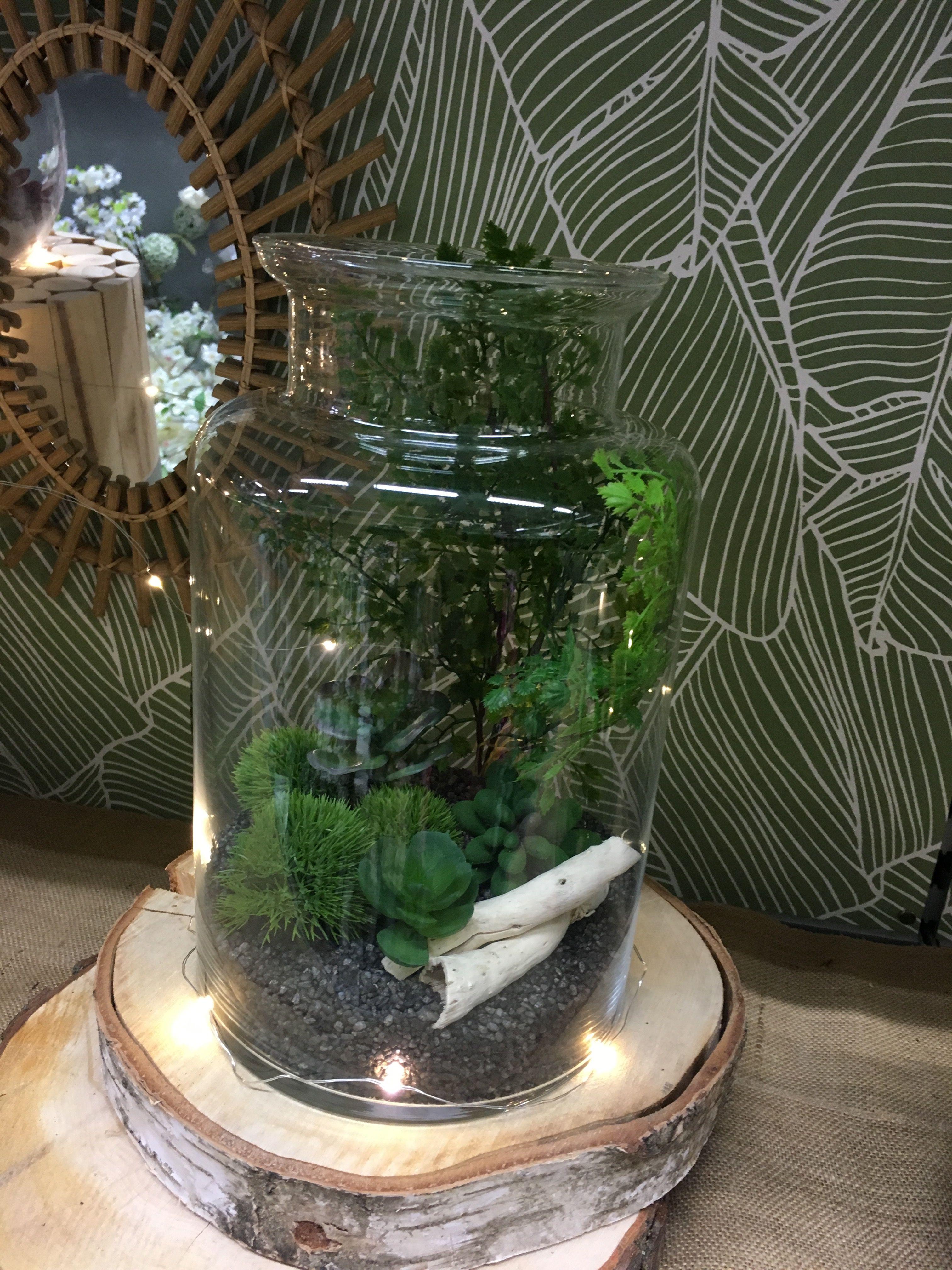 Diy Terrarium Pot A Lait Terrariums Diy Zodio