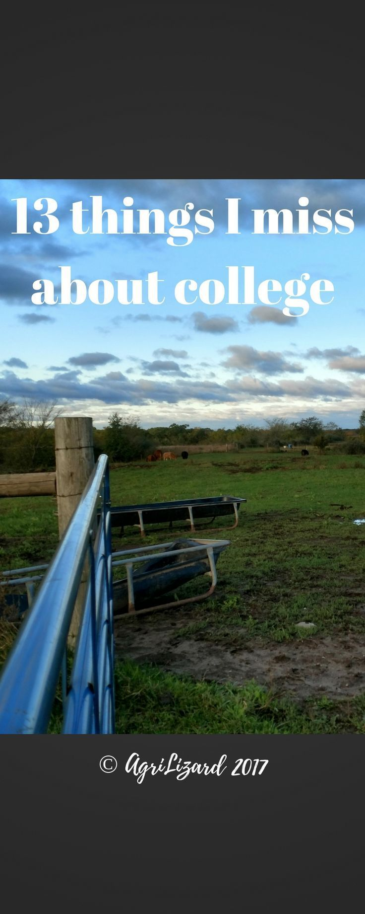 13 Things I Miss About College College, Ag jobs, Student