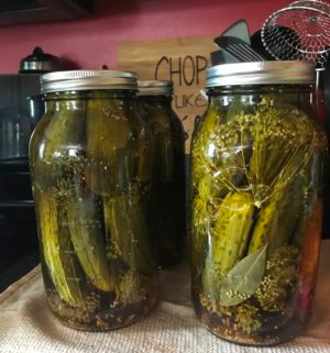 Traditional Dill Pickle Canning Recipe – Simple and Delicious